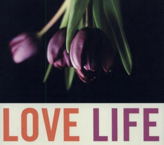 Love Life by Ray Kluun - Google Books