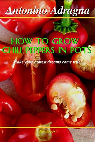 How to Grow Chili Peppers in Pots